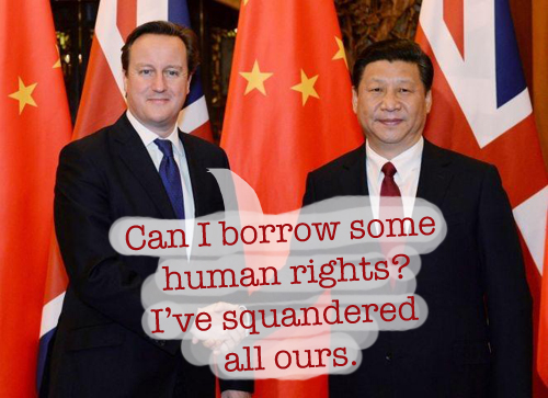 Psipook | Cameron Xi human rights pig